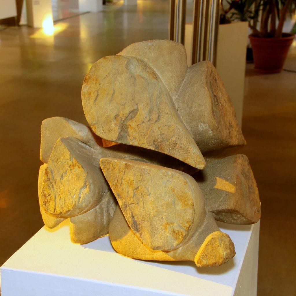 Regentropfenschildkröte von Tilo Tscheulin